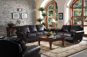 Dark Brown Quality Leather Living Room Set