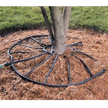 Tree Soaker Hose Better Home Improvement Www