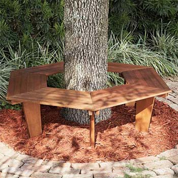 tree benches wood