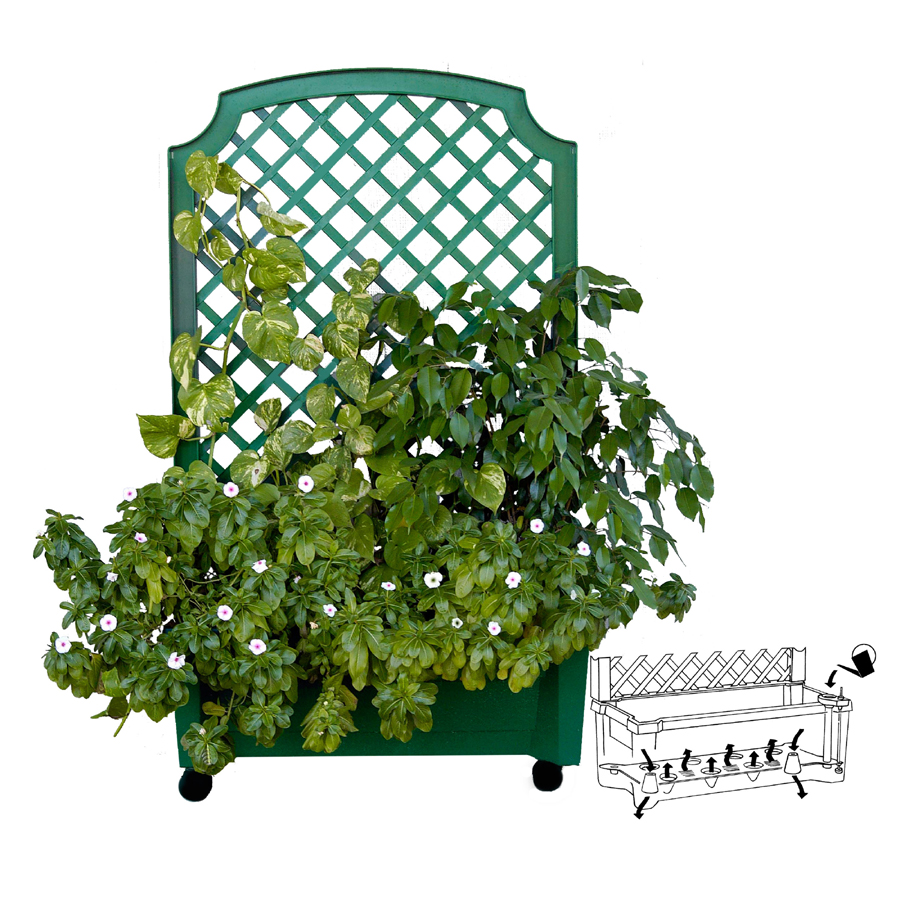 Calypso Self Watering Planter With Trellis Green Better Home