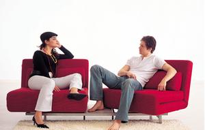 sofa1 Contemporary Sofa Bed
