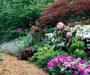 Pink Springtime Garden Plan