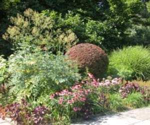 design your garden Design Your Garden