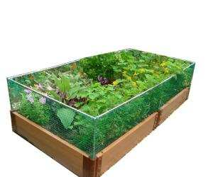 Raised Garden Bed With Small Animal Barrier