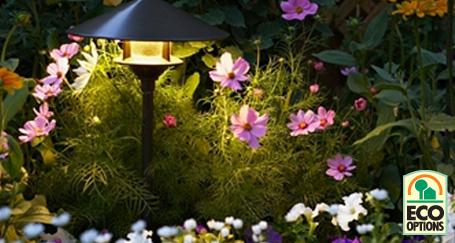 Highlight Your Garden's Highlight Your Garden