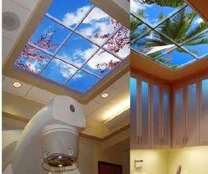 window Virtually Stunning Skylight