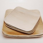 Fallen Leaves Dinnerware Introduces Clean Dishes