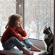 427 Prepare for Winter: Modern Methods of Windows Insulation