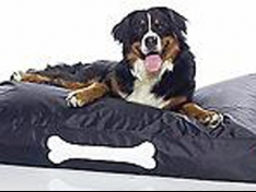 Lovely Beds for Your Pets