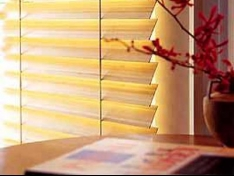 Fashionable Blinds for Any Interior