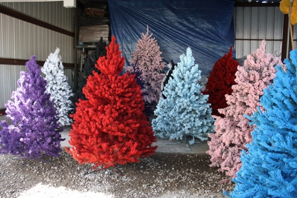 Colorful Christmas Trees: Fashion Trend Of This Year