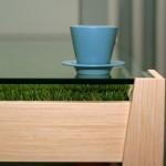 "Eco-Friendly ""Table With Grass"""