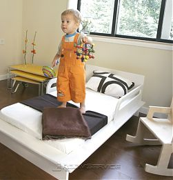 Petra Toddler Bed By Argington